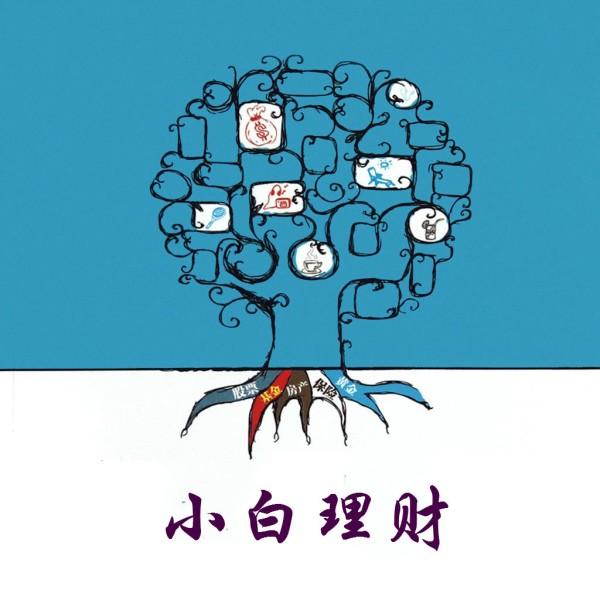 小白理财(股票基金债券房产)
