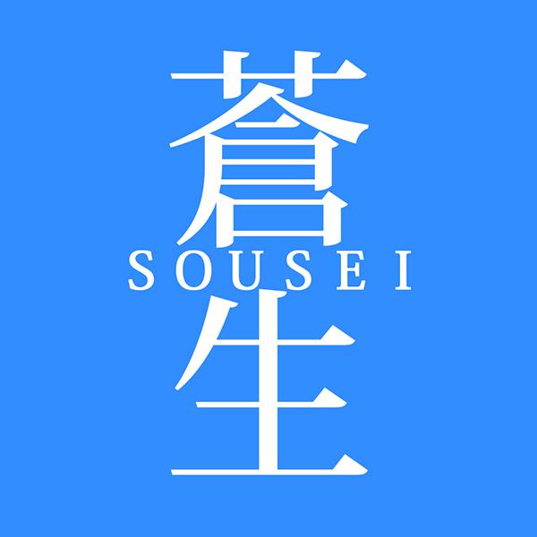 sousei_novel